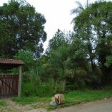 Terreno com 24.500m2 no bairro da Cotia, área urbana, junto ao asfalto